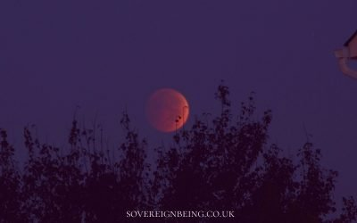 Sagittarius Lunar Eclipse 2021 – Card Guidance