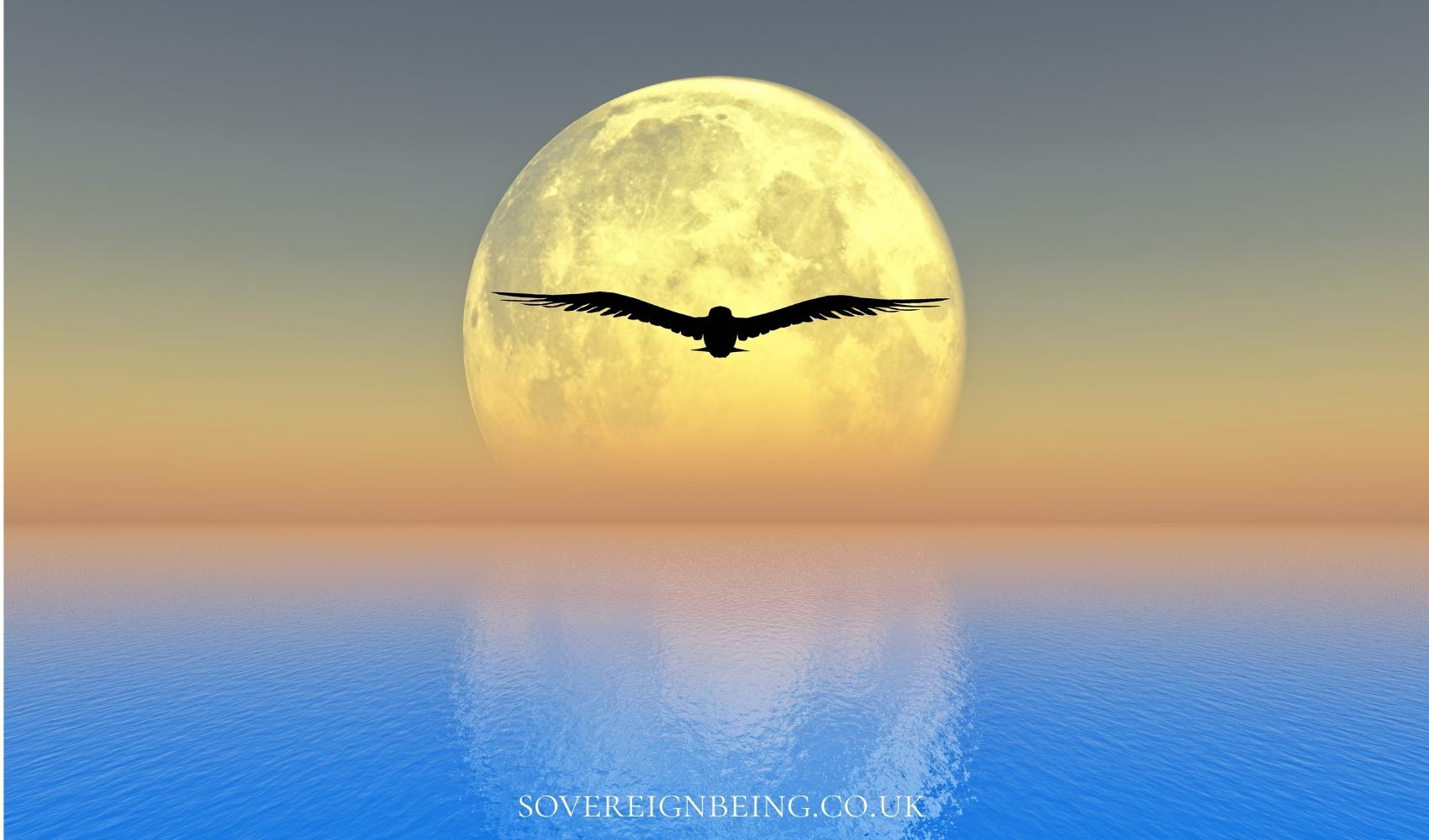 Capricorn Full Moon 2021 astrological update
